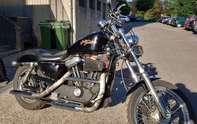 Harley-Davidson XL 883 C53 Sportster