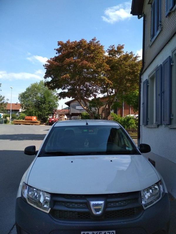 Dacia Sandero 1.2 Dacia 4